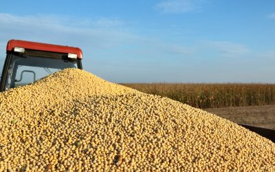 Try These 5 Tips for Accurate Harvest Yield Monitor Calibration